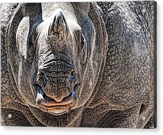 Beautiful Beast Acrylic Print