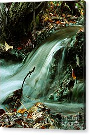 Beautiful Creek Acrylic Print