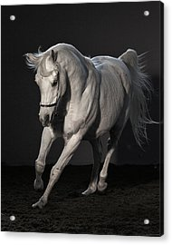 Beautiful Dancer Acrylic Print