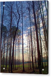 Beautiful Day Acrylic Print by Beverly Hammond