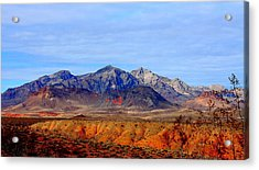 Beautiful Desert Acrylic Print