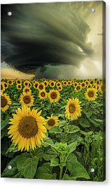 Acrylic Print featuring the photograph Beautiful Destruction  by Aaron J Groen