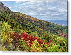 Acrylic Print featuring the photograph Beautiful Fall Foliage In The Blue Ridge Mountains by Lori Coleman