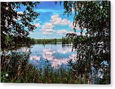 beautiful forest lake in Sunny summer day Acrylic Print