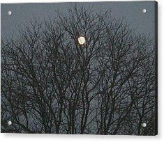 Beautiful Moon Acrylic Print