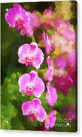 Beautiful Orchids Acrylic Print