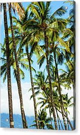 Acrylic Print featuring the photograph Beautiful Palms Of Maui 16 by Micah May