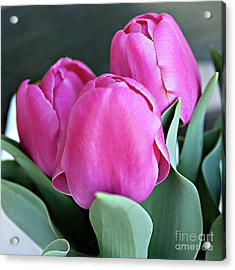 Beautiful Pink Lipstick Acrylic Print