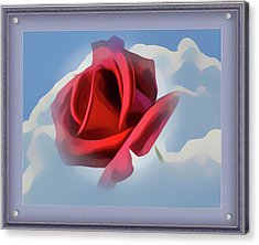 Beautiful Red Rose Cuddled By Cumulus Acrylic Print