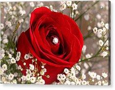 Beautiful Red Rose With Diamond Acrylic Print by Tracie Kaska