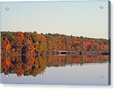 Beautiful Reflections Acrylic Print