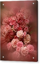 Beautiful Roses 2016 Acrylic Print