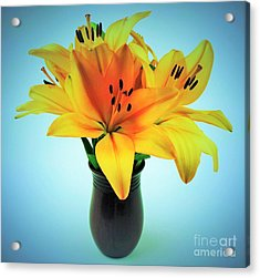 Acrylic Print featuring the photograph Beautiful Royal Lilies  by Ray Shrewsberry