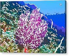 Beautiful Sea Fan Coral 2 Acrylic Print by Lanjee Chee