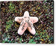 Beautiful Starfish In The Coral Reef Acrylic Print by Lanjee Chee