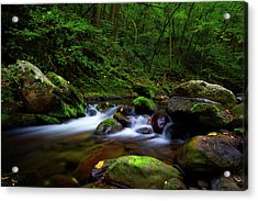 Beautiful Stream In Tremont Smoky Mountains Tennessee Acrylic Print