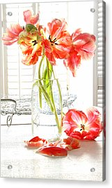Beautiful Tulips In Old Milk Bottle  Acrylic Print by Sandra Cunningham