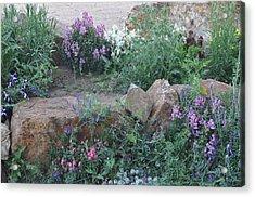Beauty Amongst The Stones Acrylic Print
