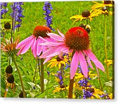Beauty And The Bees Acrylic Print