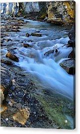 Beauty Creek Acrylic Print by Larry Ricker