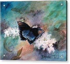 Beauty II Acrylic Print