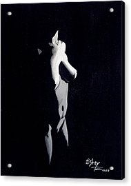 Beauty In The Shadows 4 Acrylic Print by Don MacCarthy