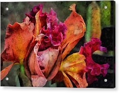 Beauty Of An Orchid Acrylic Print by Trish Tritz