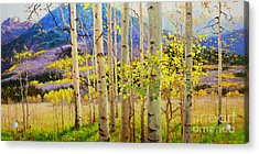 Beauty Of Aspen Colorado Acrylic Print by Gary Kim