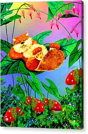 Beaver Bedtime Acrylic Print by Hanne Lore Koehler