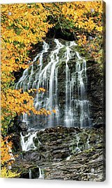 Beaver Brook Falls 8918 Acrylic Print by Dan Beauvais