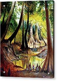 Beaver Dam On Village Creek Acrylic Print