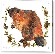 Beaver Painting Acrylic Print by Alison Fennell