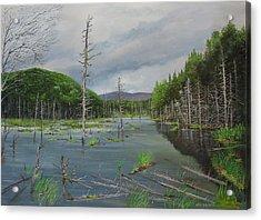 Beaver Pond In Londonderry Vt Acrylic Print