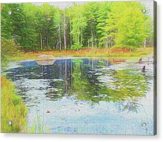 Beaver Pond Reflections Acrylic Print