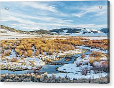 beaver swamp in Rocky Mountains Acrylic Print by Marek Uliasz