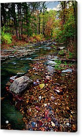 Beaver's Bend Tiny Stream Vertical Acrylic Print by Tamyra Ayles