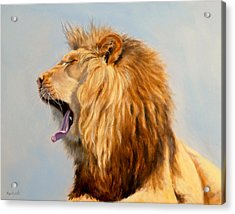 Bed Head - Lion Acrylic Print