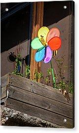 Bee A Wind Spinner? Acrylic Print