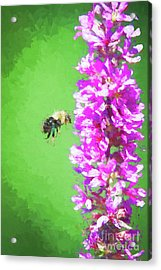 Bee Kissing A Flower Acrylic Print