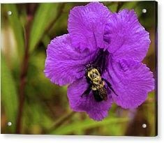 Bee Mine Acrylic Print by Elijah Knight