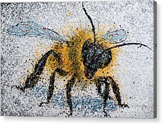 Bee Number One Acrylic Print by Michael Glass