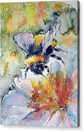 Bee On Flower Acrylic Print by Kovacs Anna Brigitta