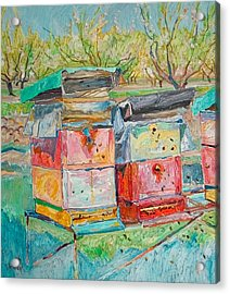 Beehives In Orchard Acrylic Print by Vitali Komarov