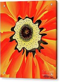 Bee'seye View Acrylic Print