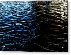 Acrylic Print featuring the photograph Befallen by Eric Christopher Jackson