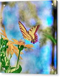 Before The Heat Of The Day Acrylic Print