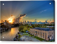 Behind Miami Acrylic Print by William Wetmore