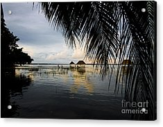 Acrylic Print featuring the photograph Behind The Leaves by Yuri Santin