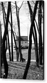 Acrylic Print featuring the photograph Behind The Trees by Valentino Visentini