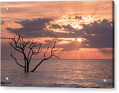 Behold Acrylic Print by Michael Donahue